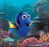 Find Dory